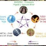 I Ching en Argentina Hexagrama 42 El Aumento El Pozo de Agua Laura Paradiso